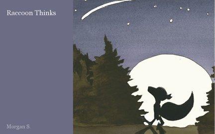 Raccoon Thinks