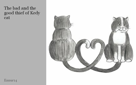 The bad and the good thief of Kedy cat