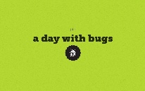 a day with bugs