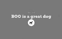 BOO is a great dog