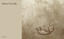 Before You Fall...