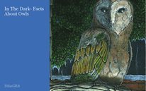 In The Dark- Facts About Owls