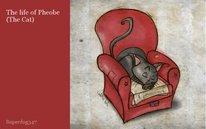 The life of Pheobe (The Cat)