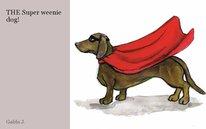 THE Super weenie dog!
