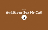 Auditions For Mr.Cat!