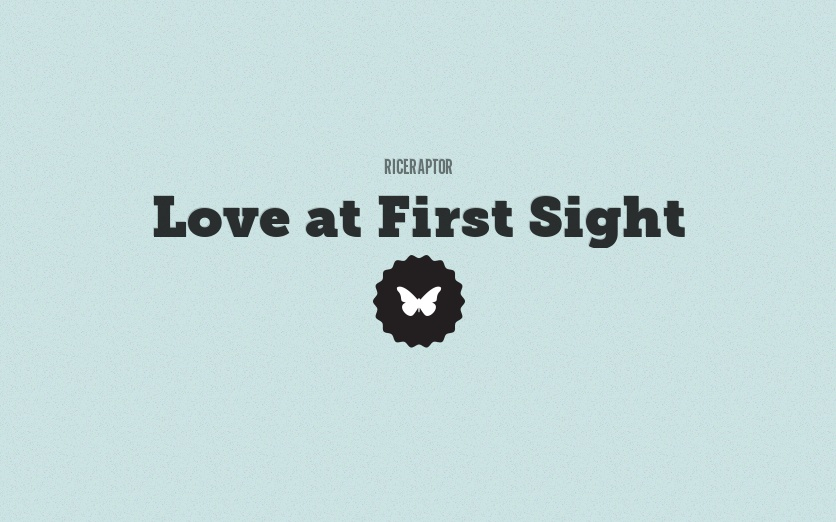 a personal narrative on love at first sight Ways to fall in love essay - many people believe in love at first sight, and some in falling in love over time but why can't a love story have both they can hades and persephone's story clarifies this.