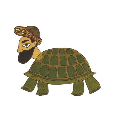 The turtle man