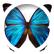 butterflyluver
