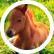 horse_lover008